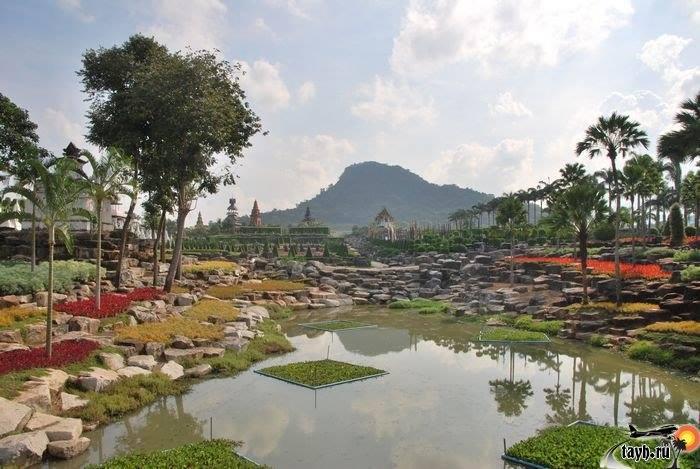 Тропический сад Нонг Нуч.Nong Nooch Tropical Garden.Паттайя .Тайланд