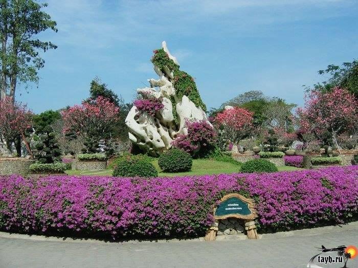 Парк миллион летних камней и крокодиловая ферма. The million years stone park & Pattaya crocodile farm