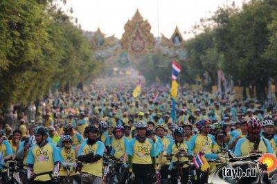 велопробег для папы