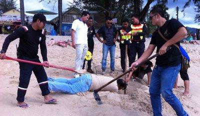 Опасности пляжа Камала
